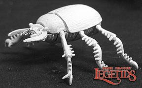 Giant Scarab Beetle