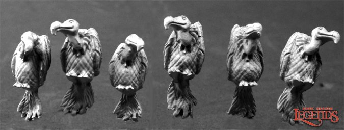Vultures (6)