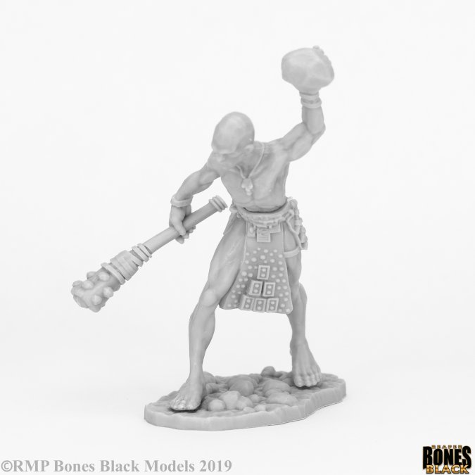 Stone Giant Guard