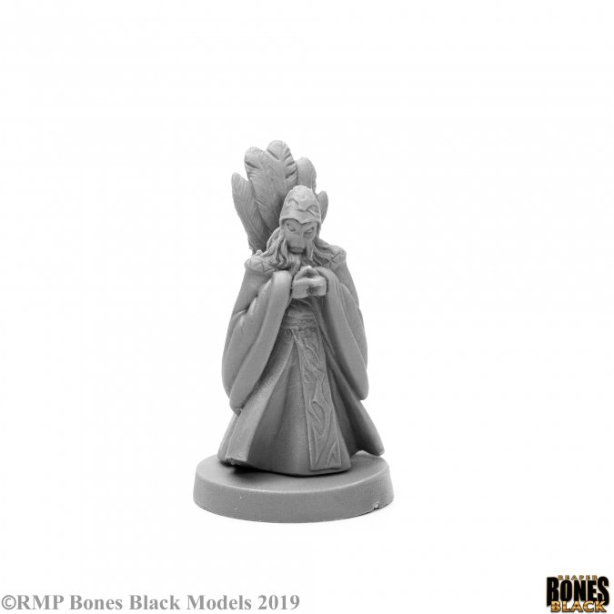 Andromedan Vizier