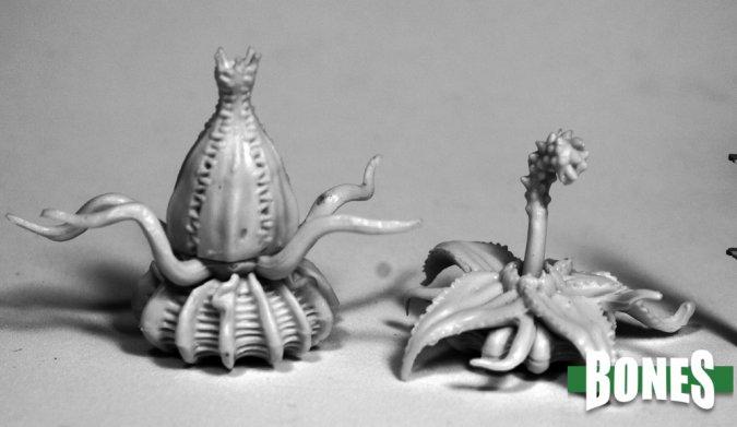 Death Star Lilies (2)